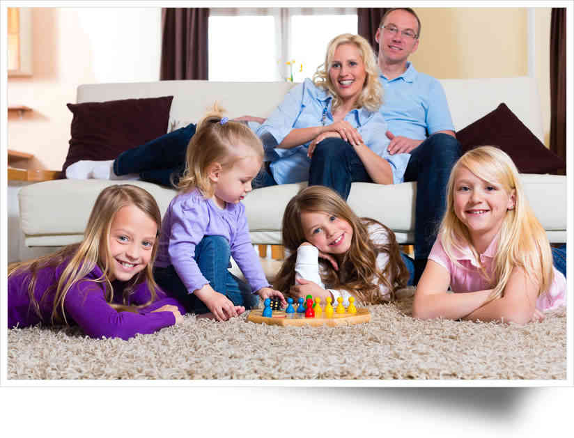 Reliable carpet cleaning & pest control services
